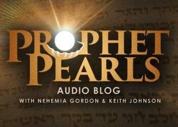 Prophet Pearls Bereshith