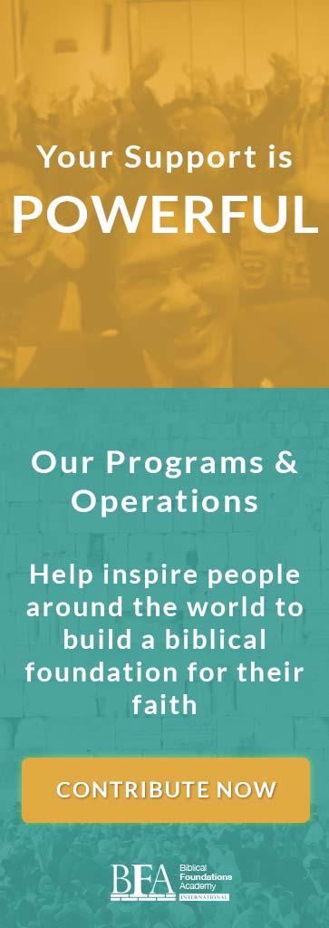 Support BFA Programs Operations